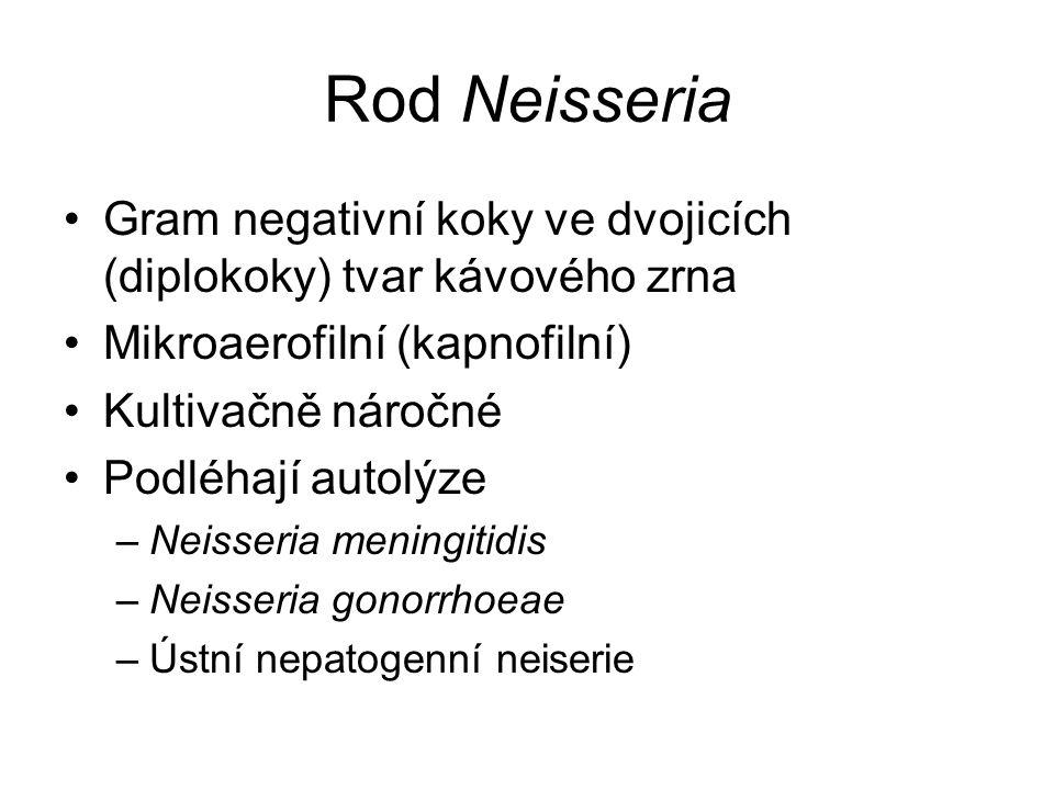 Rod Neisseria Gram negativní koky ve dvojicích (diplokoky) tvar kávového zrna Mikroaerofilní (kapnofilní) Kultivačně náročné Podléhají autolýze –Neiss
