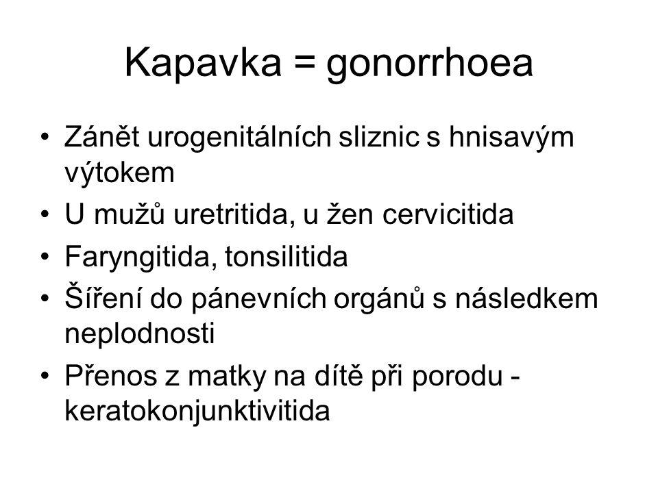 Kapavka = gonorrhoea Zánět urogenitálních sliznic s hnisavým výtokem U mužů uretritida, u žen cervicitida Faryngitida, tonsilitida Šíření do pánevních