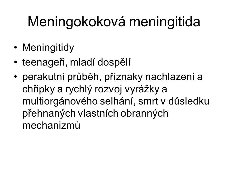 Meningokoková meningitida Meningitidy teenageři, mladí dospělí perakutní průběh, příznaky nachlazení a chřipky a rychlý rozvoj vyrážky a multiorgánové