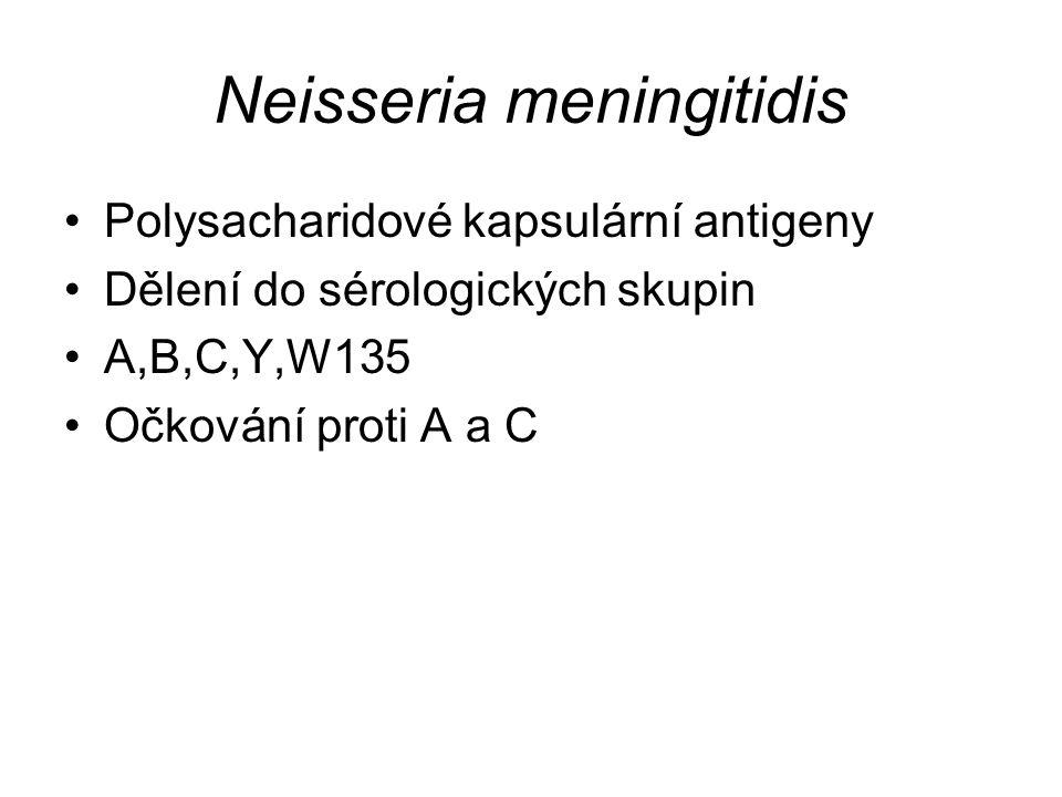 Neisseria meningitidis Diagnostika Výtěr z krku, mozkomíšní mok, krev Mikroskopie – gram negativní diplokoky Latexová aglutinace – průkaz antigenů menigokoka přímo z likvoru, krve nebo moče Kultivace – KA, čokoládový agar při zvýšené tenzi CO 2 PCR