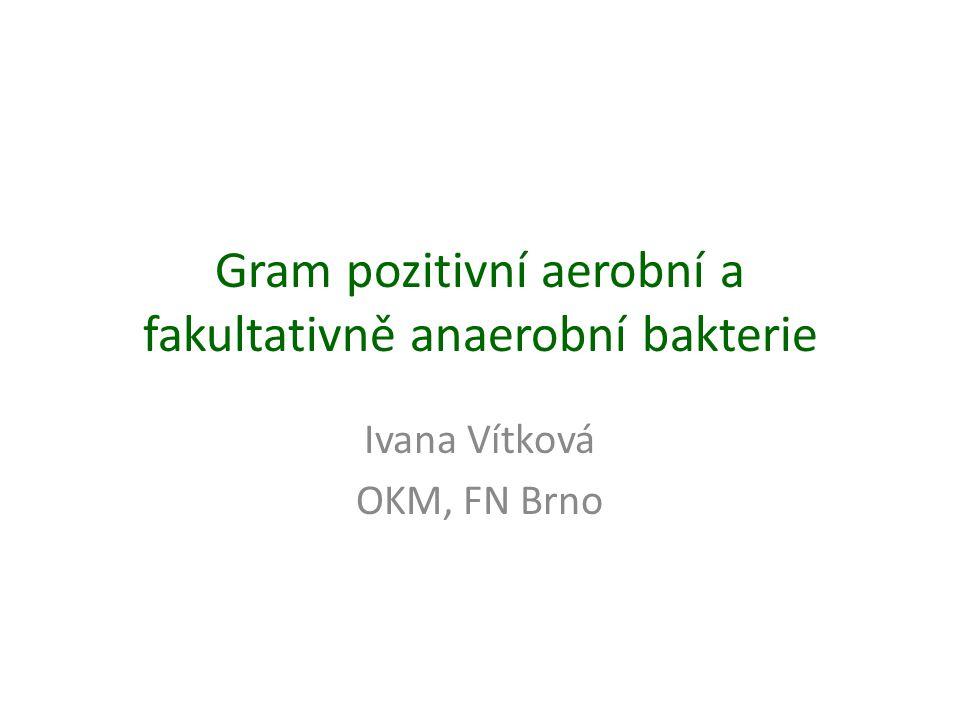 Gram pozitivní aerobní a fakultativně anaerobní bakterie Ivana Vítková OKM, FN Brno