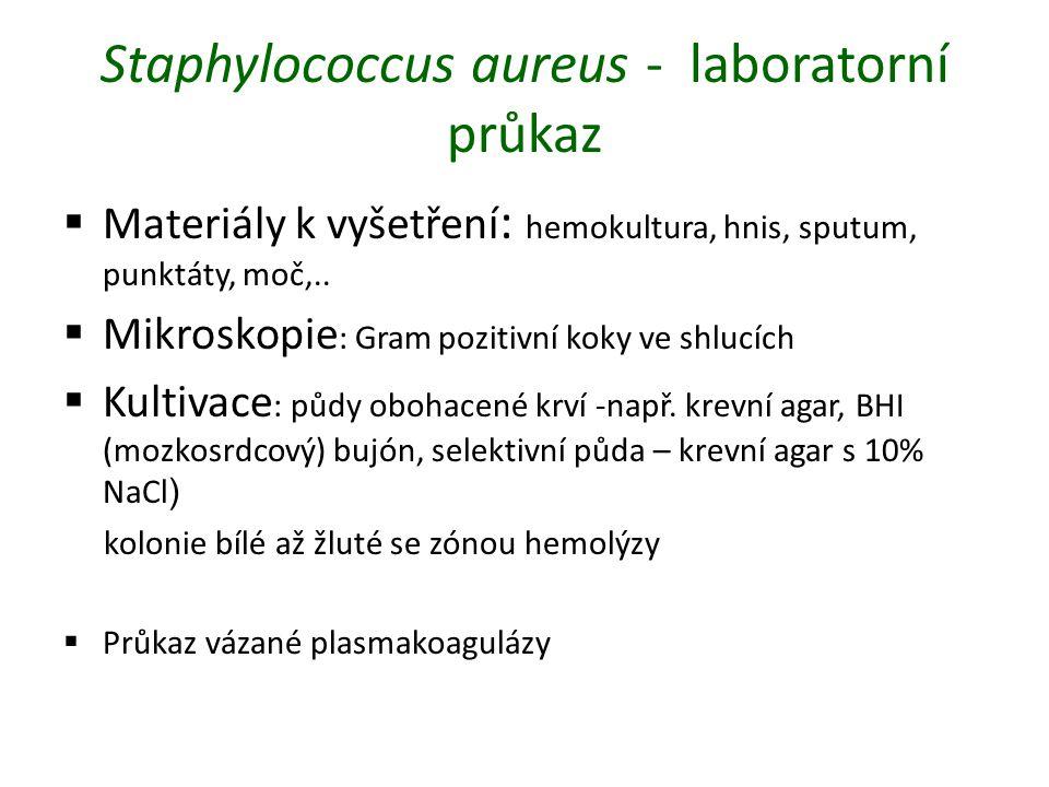 Staphylococcus aureus - laboratorní průkaz  Materiály k vyšetření : hemokultura, hnis, sputum, punktáty, moč,..  Mikroskopie : Gram pozitivní koky v