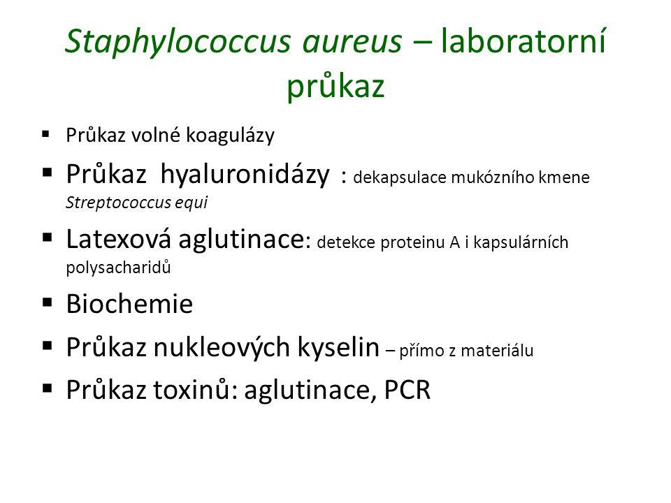 Staphylococcus aureus – laboratorní průkaz  Průkaz volné koagulázy  Průkaz hyaluronidázy : dekapsulace mukózního kmene Streptococcus equi  Latexová aglutinace : detekce proteinu A i kapsulárních polysacharidů  Biochemie  Průkaz nukleových kyselin – přímo z materiálu  Průkaz toxinů: aglutinace, PCR