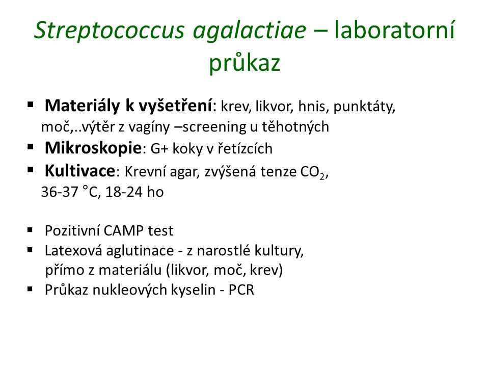 Streptococcus agalactiae – laboratorní průkaz  Materiály k vyšetření: krev, likvor, hnis, punktáty, moč,..výtěr z vagíny –screening u těhotných  Mikroskopie : G+ koky v řetízcích  Kultivace : Krevní agar, zvýšená tenze CO 2, 36-37 °C, 18-24 ho  Pozitivní CAMP test  Latexová aglutinace - z narostlé kultury, přímo z materiálu (likvor, moč, krev)  Průkaz nukleových kyselin - PCR