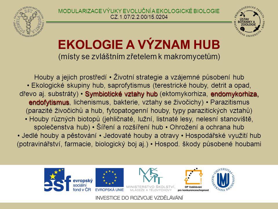 EKOLOGIE A VÝZNAM HUB (místy se zvláštním zřetelem k makromycetům) Symbiotické vztahy hubendomykorhiza, endofytismus Houby a jejich prostředí Životní