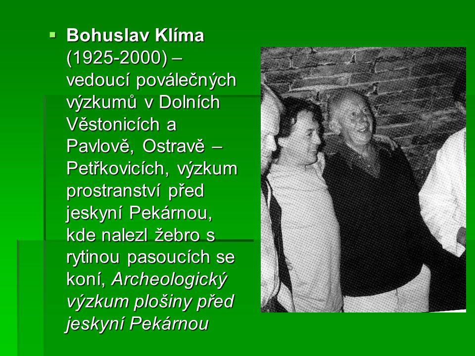  Bohuslav Klíma (1925-2000) – vedoucí poválečných výzkumů v Dolních Věstonicích a Pavlově, Ostravě – Petřkovicích, výzkum prostranství před jeskyní Pekárnou, kde nalezl žebro s rytinou pasoucích se koní, Archeologický výzkum plošiny před jeskyní Pekárnou