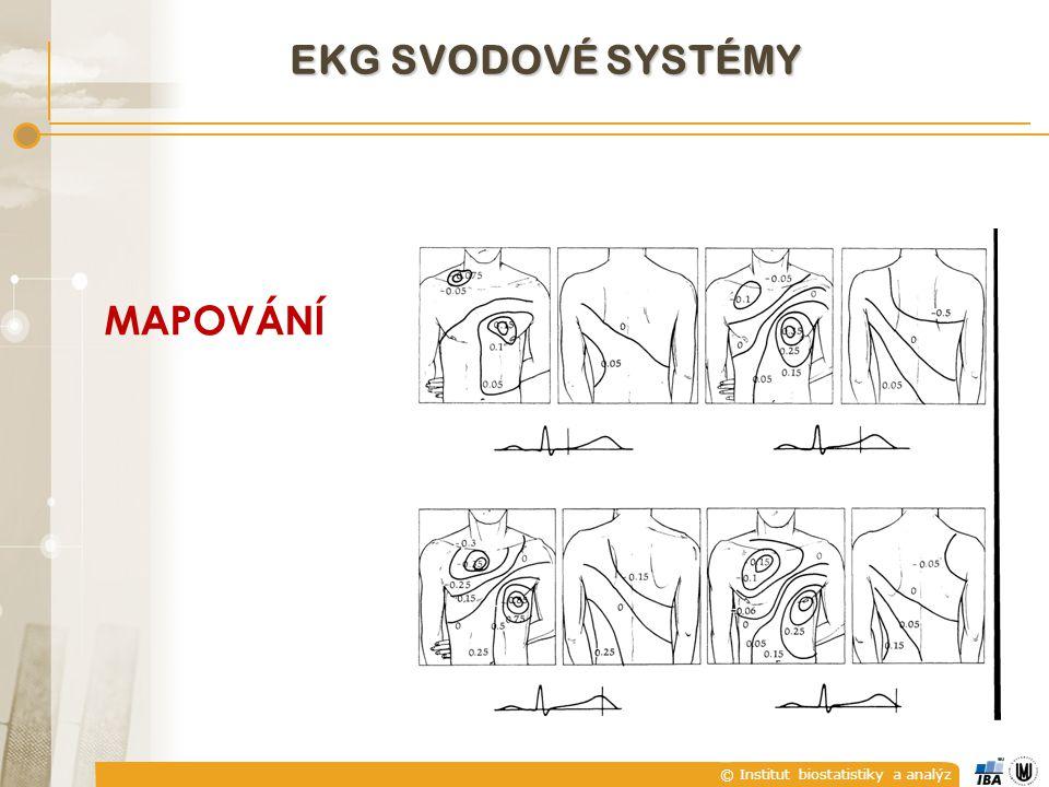 © Institut biostatistiky a analýz EKG SVODOVÉ SYSTÉMY MAPOVÁNÍ