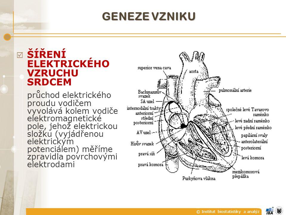 © Institut biostatistiky a analýz  drift izolinie  pomalé elektrochemické děje na rozhraní elektroda x pokožka, dýchání pacienta (do 0,8 Hz);  pomalé pohyby pacienta (do 1,5 Hz) RUŠENÍ SIGNÁLU EKG
