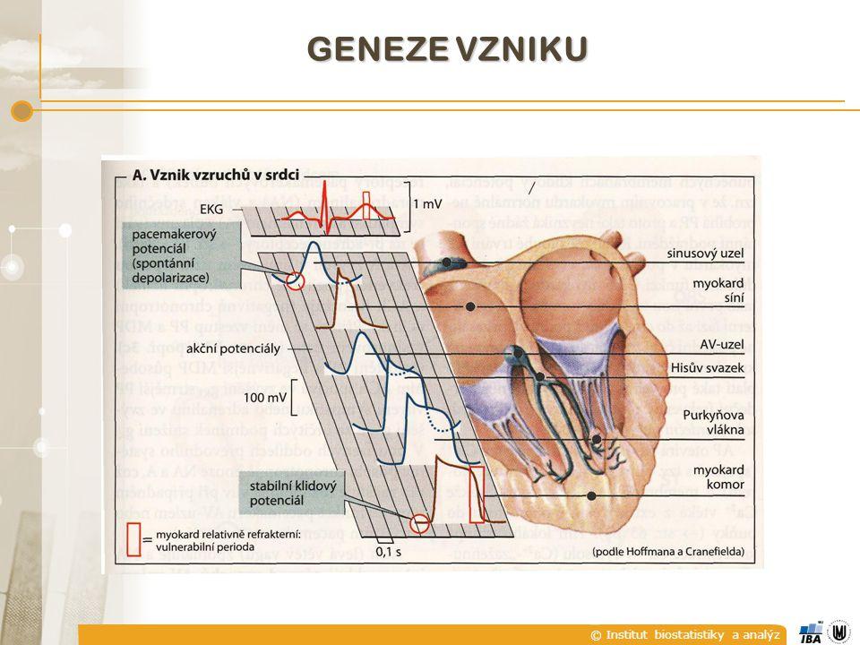 © Institut biostatistiky a analýz GENEZE VZNIKU