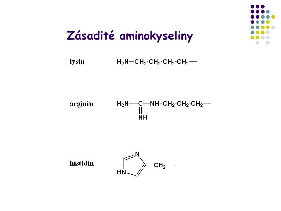 Zásadité aminokyseliny