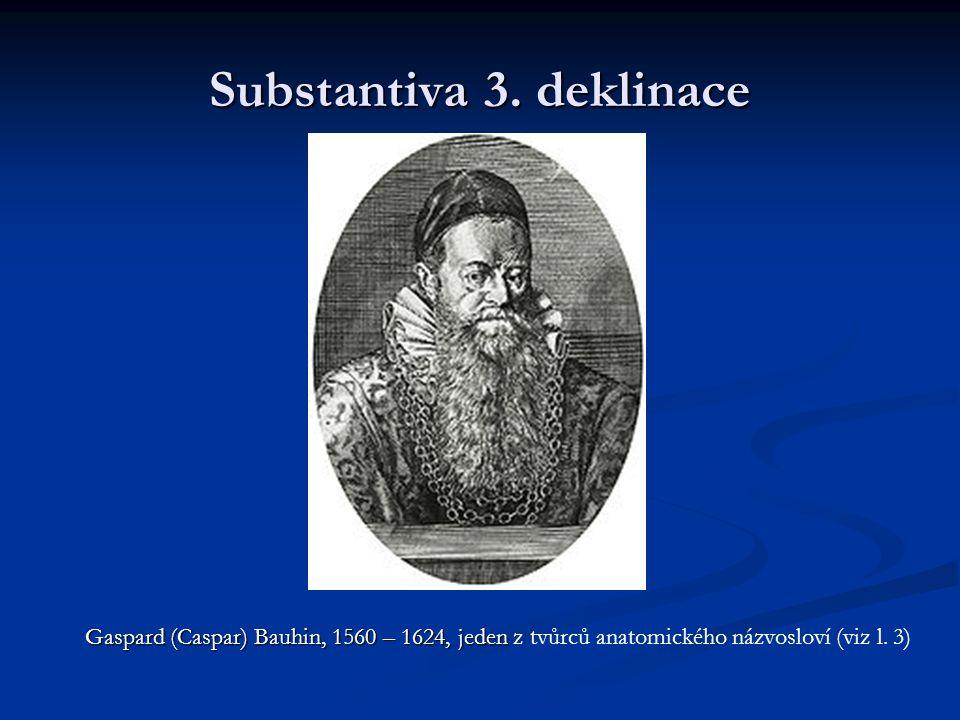 Substantiva 3.deklinace Slovníkový tvar Slovníkový tvar substantiv 3.