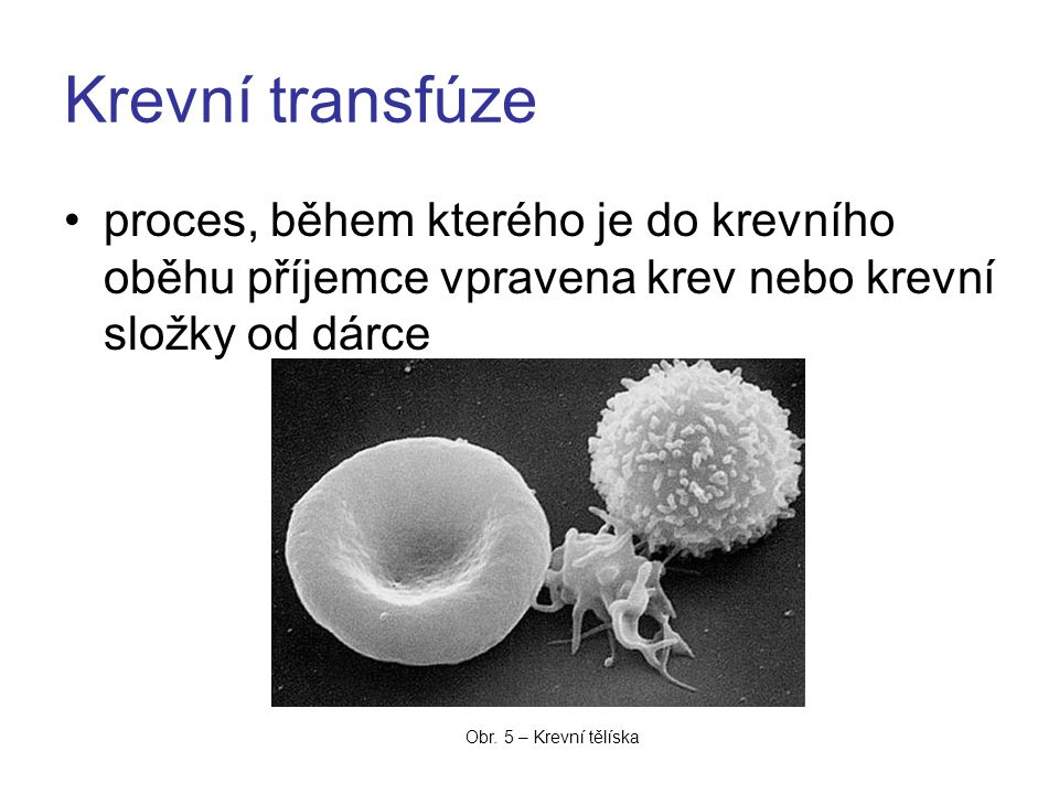 Krevní transfúze proces, během kterého je do krevního oběhu příjemce vpravena krev nebo krevní složky od dárce Obr. 5 – Krevní tělíska