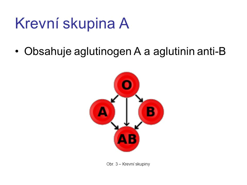 Krevní skupina A Obsahuje aglutinogen A a aglutinin anti-B Obr. 3 – Krevní skupiny