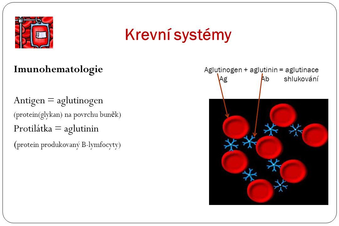 Krevní systémy Imunohematologie Antigen = aglutinogen (protein(glykan) na povrchu bun ě k) Protilátka = aglutinin ( protein produkovaný B-lymfocyty) A