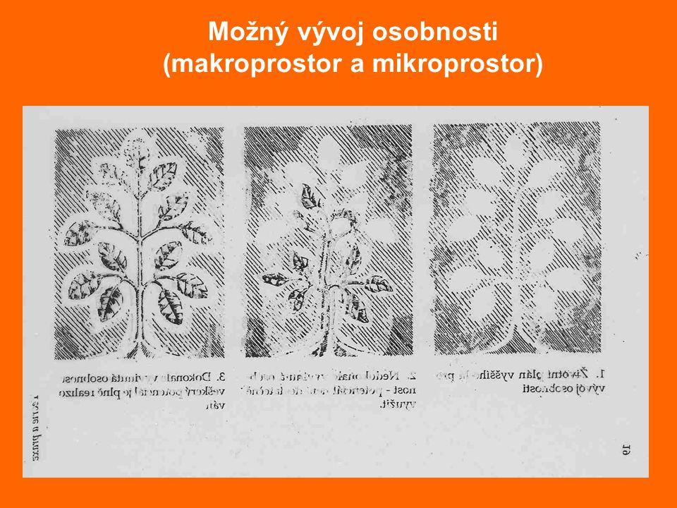 Možný vývoj osobnosti (makroprostor a mikroprostor)