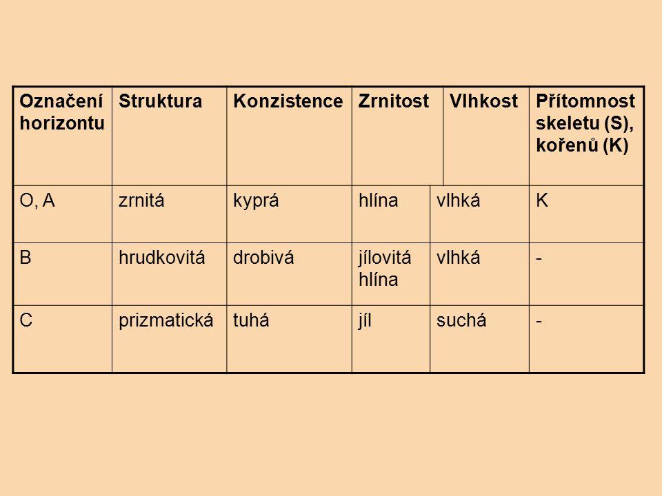 Označení horizontu StrukturaKonzistenceZrnitostVlhkostPřítomnost skeletu (S), kořenů (K) O, AzrnitákypráhlínavlhkáK Bhrudkovitádrobivájílovitá hlína v