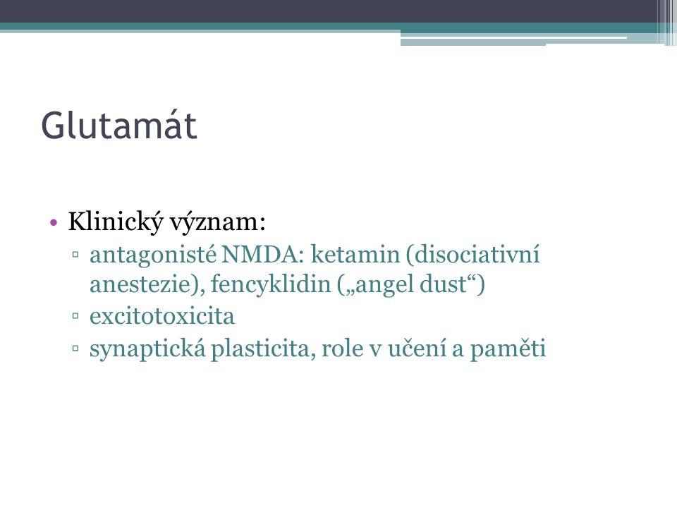 "Glutamát Klinický význam: ▫antagonisté NMDA: ketamin (disociativní anestezie), fencyklidin (""angel dust"") ▫excitotoxicita ▫synaptická plasticita, role"