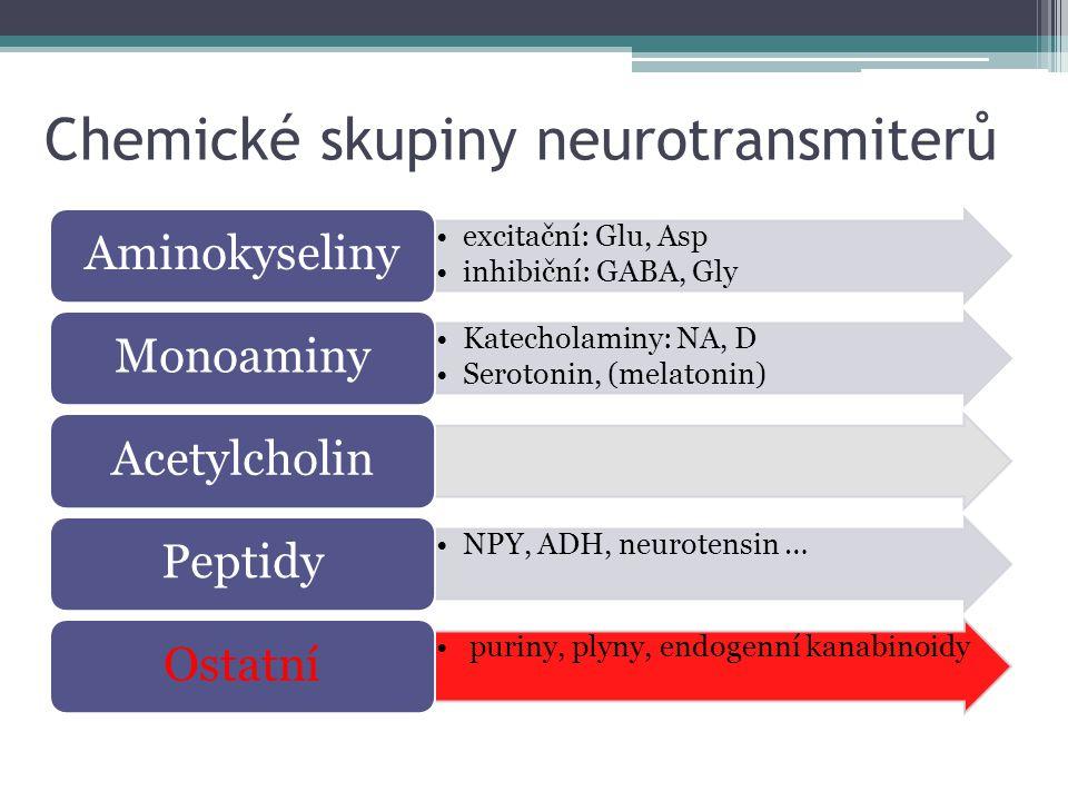 Chemické skupiny neurotransmiterů excitační: Glu, Asp inhibiční: GABA, Gly Aminokyseliny Katecholaminy: NA, D Serotonin, (melatonin) MonoaminyAcetylch