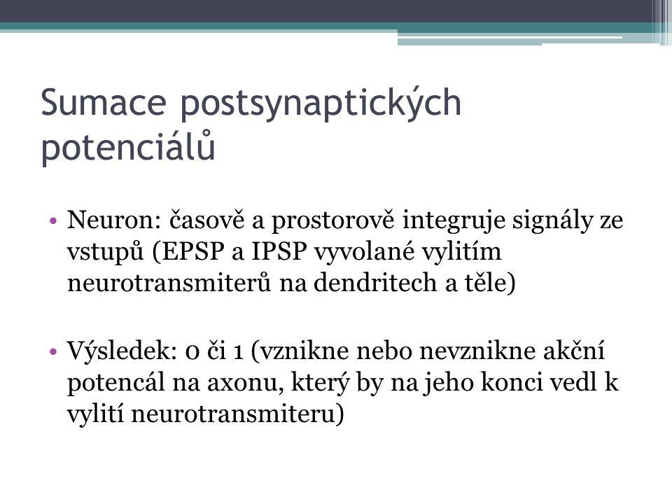 Sumace postsynaptických potenciálů Neuron: časově a prostorově integruje signály ze vstupů (EPSP a IPSP vyvolané vylitím neurotransmiterů na dendritec