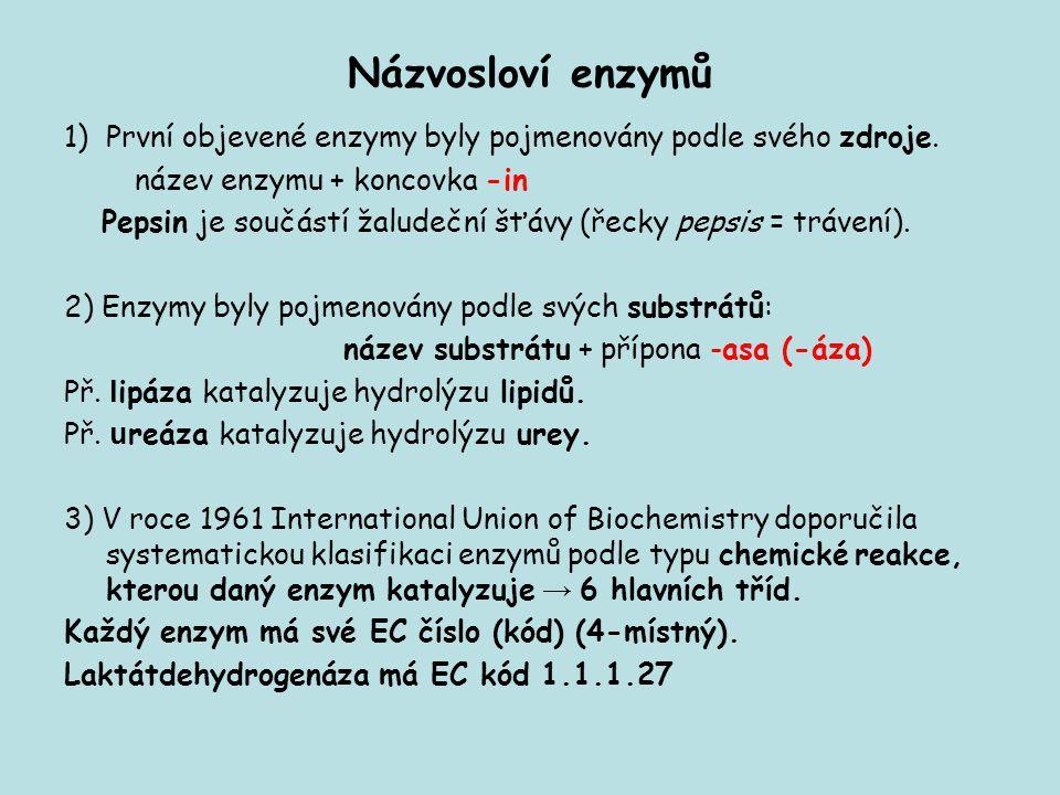 Názvosloví enzymů 1)První objevené enzymy byly pojmenovány podle svého zdroje. název enzymu + koncovka -in Pepsin je součástí žaludeční šťávy (řecky p