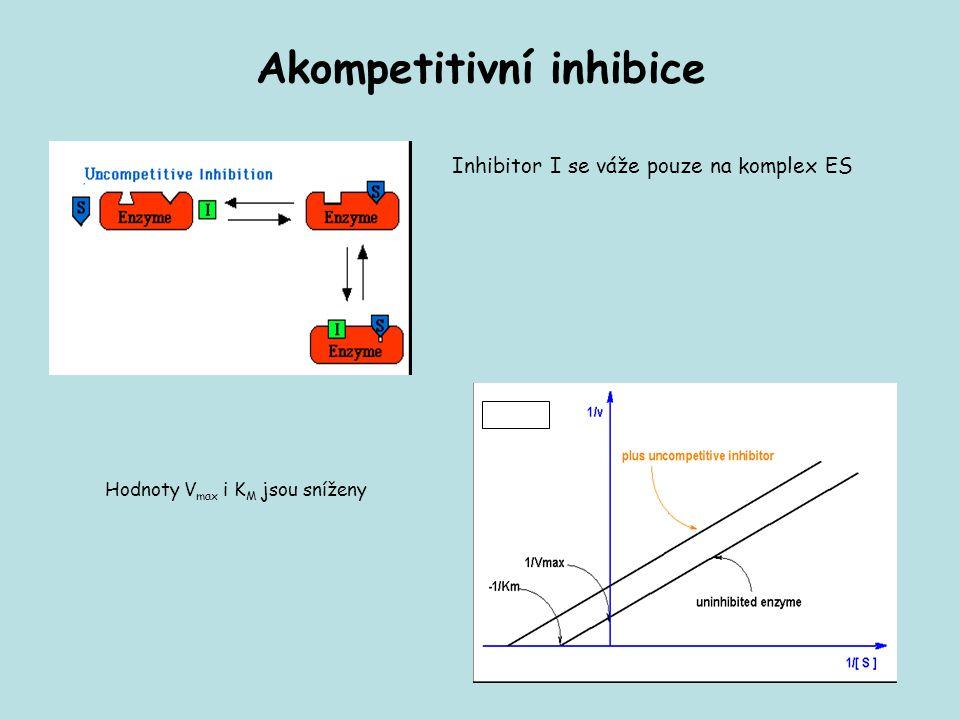 Akompetitivní inhibice Inhibitor I se váže pouze na komplex ES Hodnoty V max i K M jsou sníženy