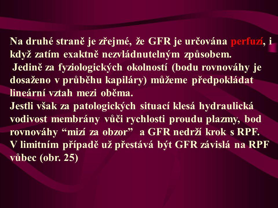 Na druhé straně je zřejmé, že GFR je určována perfuzí, i když zatím exaktně nezvládnutelným způsobem. Jedině za fyziologických okolností (bodu rovnová