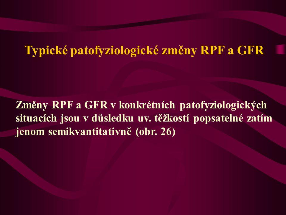 Typické patofyziologické změny RPF a GFR Změny RPF a GFR v konkrétních patofyziologických situacích jsou v důsledku uv. těžkostí popsatelné zatím jeno