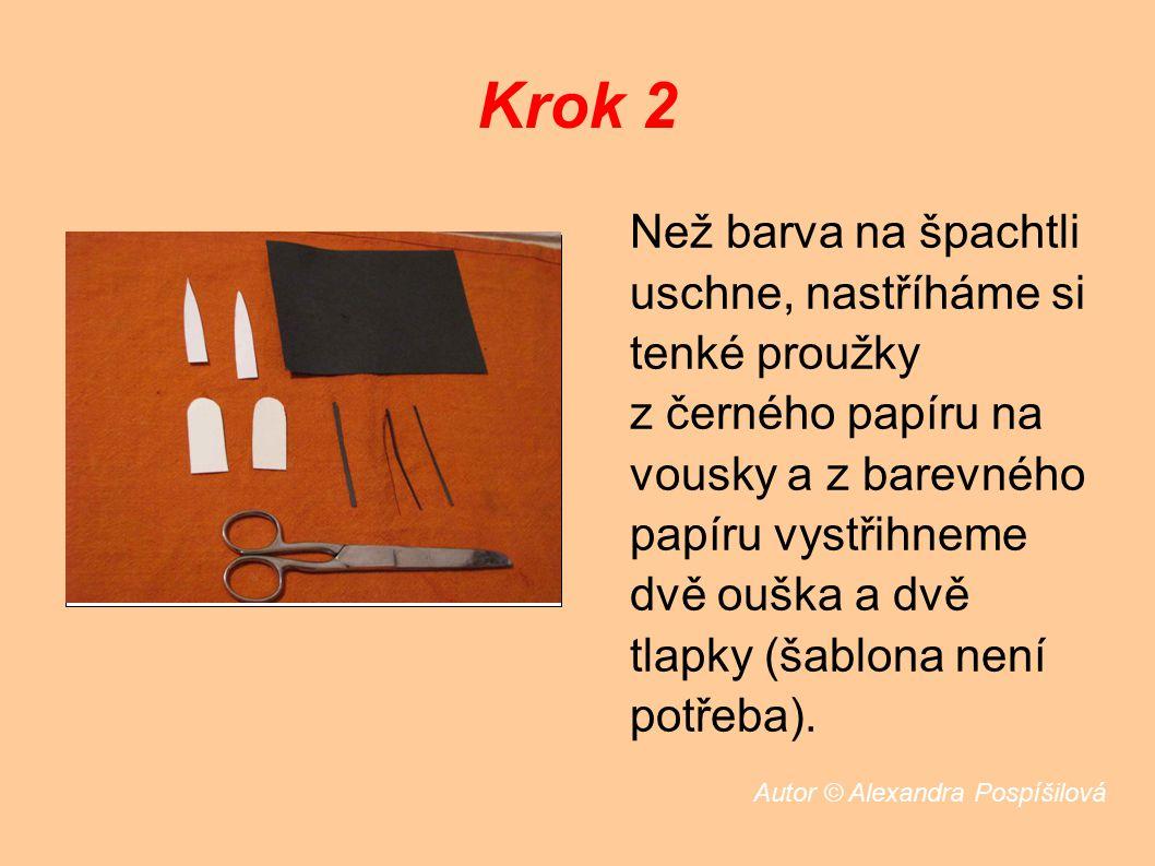 Krok 2 Než barva na špachtli uschne, nastříháme si tenké proužky z černého papíru na vousky a z barevného papíru vystřihneme dvě ouška a dvě tlapky (šablona není potřeba).