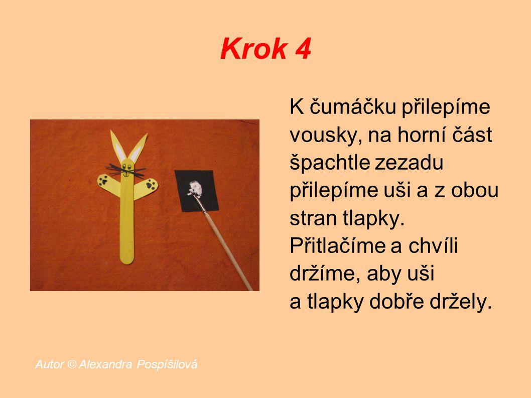 Krok 4 K čumáčku přilepíme vousky, na horní část špachtle zezadu přilepíme uši a z obou stran tlapky.