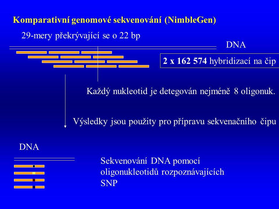 DNA Komparativní genomové sekvenování (NimbleGen) 29-mery překrývající se o 22 bp 2 x 162 574 hybridizací na čip Výsledky jsou použity pro přípravu sekvenačního čipu Sekvenování DNA pomocí oligonukleotidů rozpoznávajících SNP Každý nukleotid je detegován nejméně 8 oligonuk.