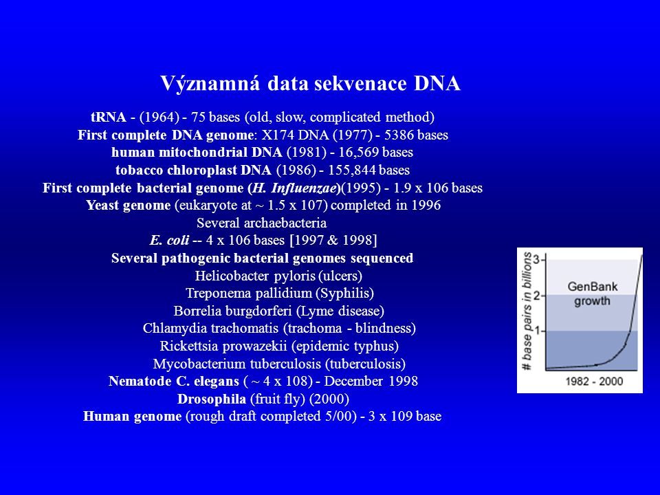 tRNA - (1964) - 75 bases (old, slow, complicated method) First complete DNA genome: X174 DNA (1977) - 5386 bases human mitochondrial DNA (1981) - 16,5