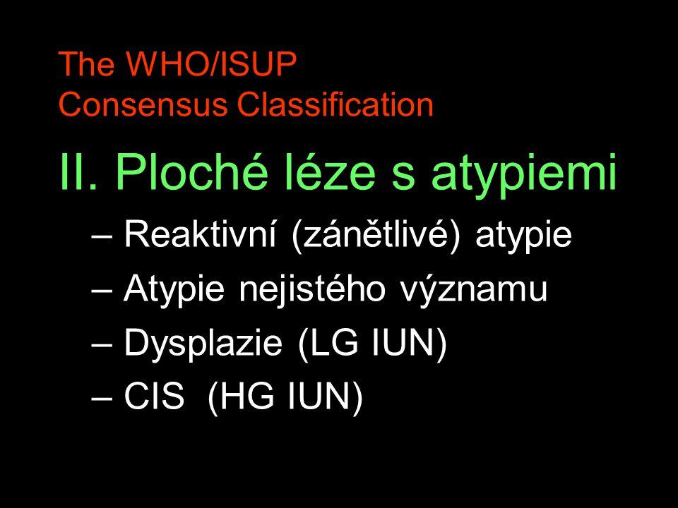 The WHO/ISUP Consensus Classification II. Ploché léze s atypiemi – Reaktivní (zánětlivé) atypie – Atypie nejistého významu – Dysplazie (LG IUN) – CIS
