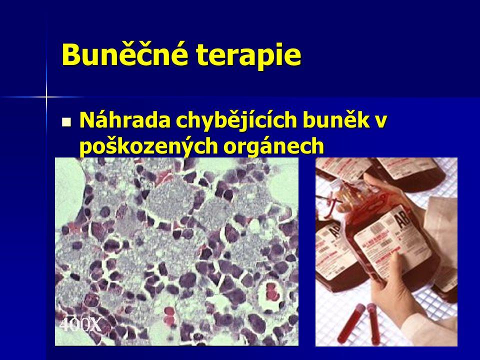 Buněčné terapie Náhrada chybějících buněk v poškozených orgánech Náhrada chybějících buněk v poškozených orgánech