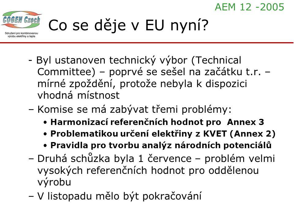 Co se děje v EU nyní? - Byl ustanoven technický výbor (Technical Committee) – poprvé se sešel na začátku t.r. – mírné zpoždění, protože nebyla k dispo