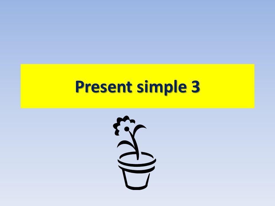 Present simple 3