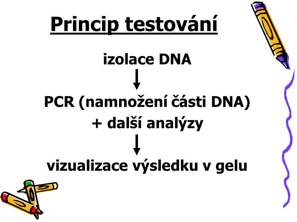 Princip testování izolace DNA PCR (namnožení části DNA) + další analýzy vizualizace výsledku v gelu