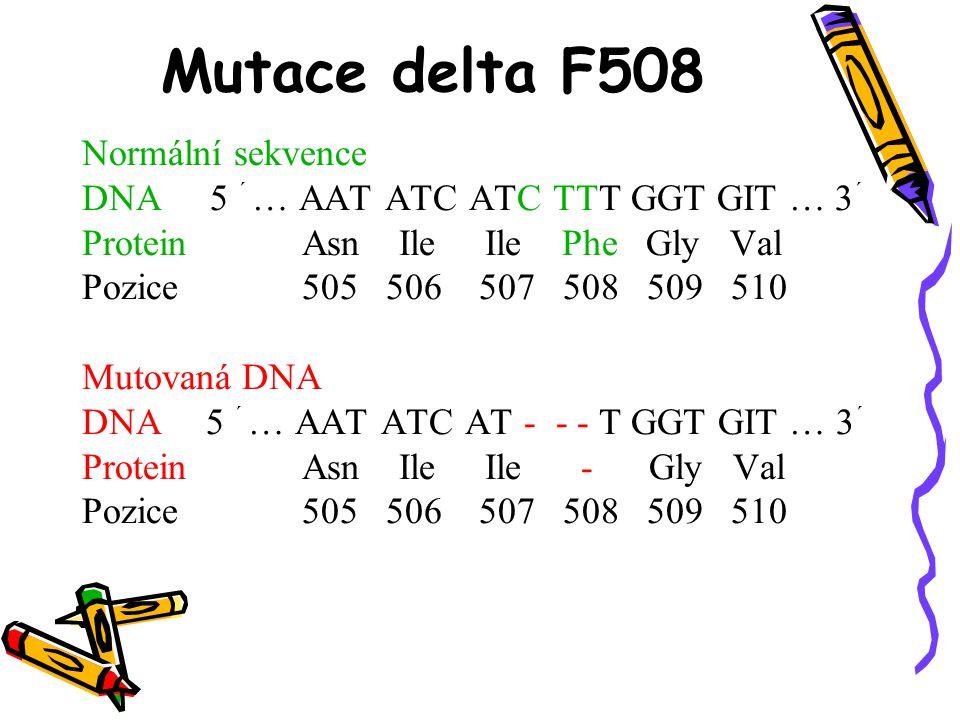 Mutace delta F508 Normální sekvence DNA 5 ´ … AAT ATC ATC TTT GGT GIT … 3 ´ Protein Asn Ile Ile Phe Gly Val Pozice 505 506 507 508 509 510 Mutovaná DN