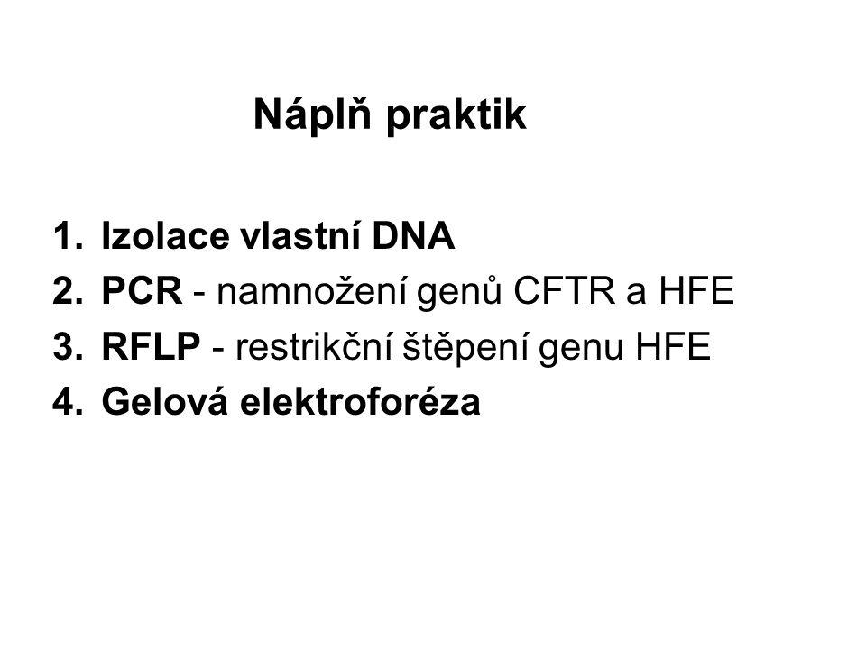 Nejčastější mutace Cystické fibrózy : gen CFTR,na 7.
