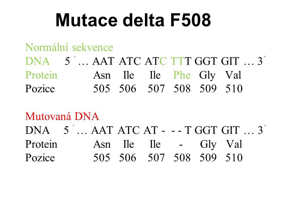 Analýza mutace delta F508 Obecný primer (O) Specifický primer bez mutace (N) Specifický primer nesoucí mutaci (M) M O Cílová sekvence N