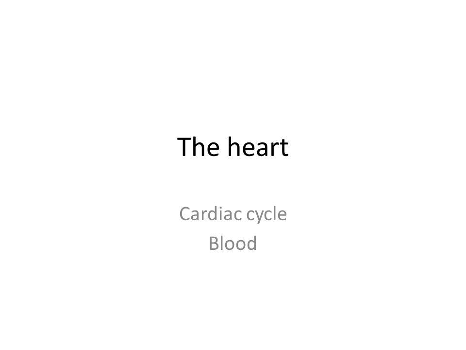 The heart Cardiac cycle Blood
