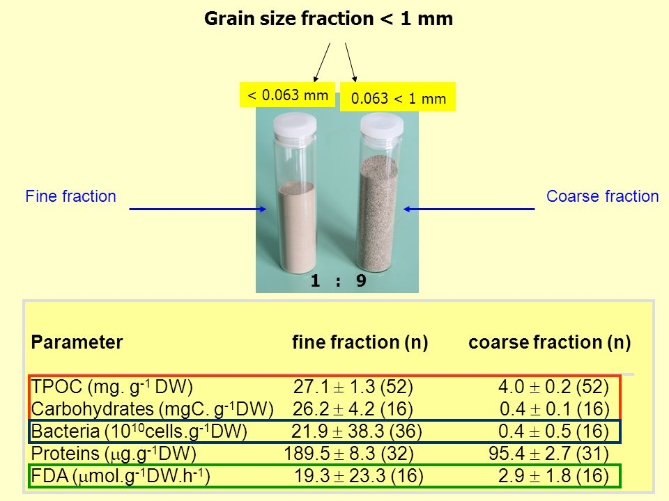 Grain size fraction < 1 mm 1 : 9 < 0.063 mm 0.063 < 1 mm Parameter fine fraction (n) coarse fraction (n) TPOC (mg.