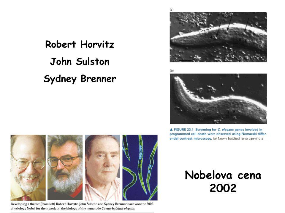 Robert Horvitz John Sulston Sydney Brenner Nobelova cena 2002