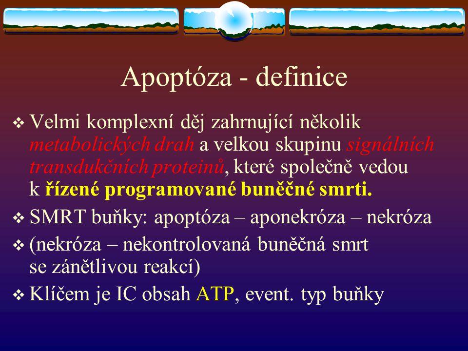 Apoptóza - definice  Velmi komplexní děj zahrnující několik metabolických drah a velkou skupinu signálních transdukčních proteinů, které společně ved