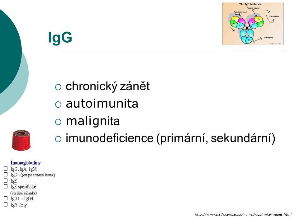 M komponenta Imalignita, vysoká FW, hypergamaglobulinémie NRvždy patologické (u mladých) Mimunoelektroforéza, imunofixace  benigní (10% pac > 70 let), malignita (IgG, IgA, IgE) - plazmocytom, mnoho č etný myelom, IgM - Waldenströmova makroglobulinémie  chronický zán ě t  systémová autoimunita  MGUS – Monoclonal Gammapathy of Unknown Significance