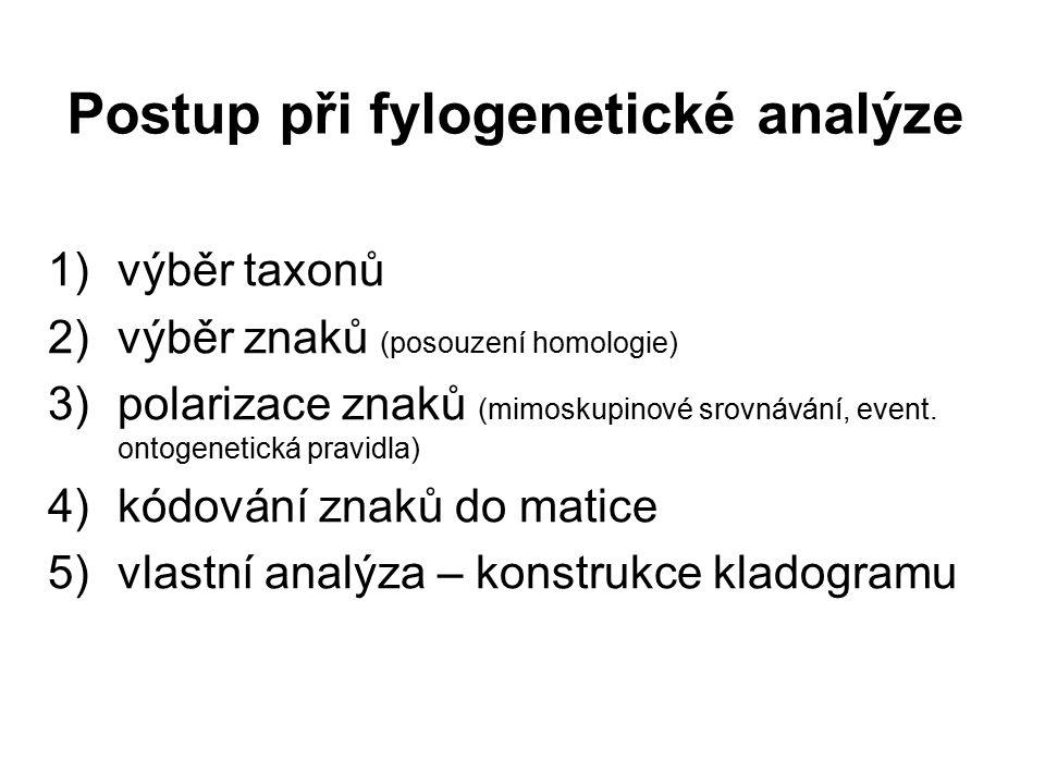 Postup při fylogenetické analýze 1)výběr taxonů 2)výběr znaků (posouzení homologie) 3)polarizace znaků (mimoskupinové srovnávání, event. ontogenetická