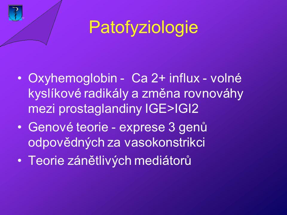 Patofyziologie Oxyhemoglobin - Ca 2+ influx - volné kyslíkové radikály a změna rovnováhy mezi prostaglandiny IGE>IGI2 Genové teorie - exprese 3 genů odpovědných za vasokonstrikci Teorie zánětlivých mediátorů