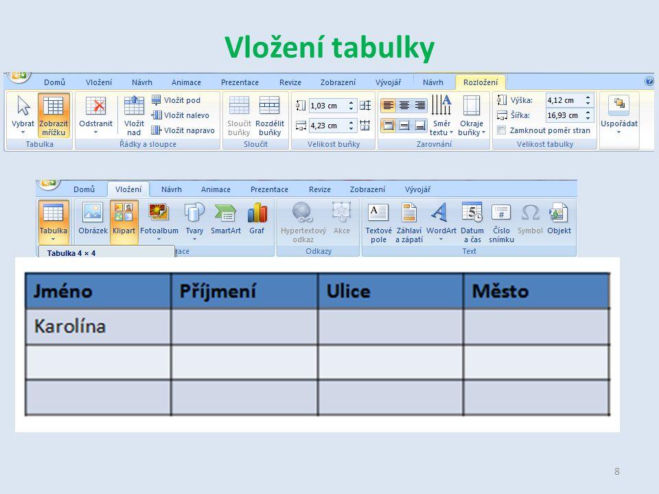 Vložení tabulky 8
