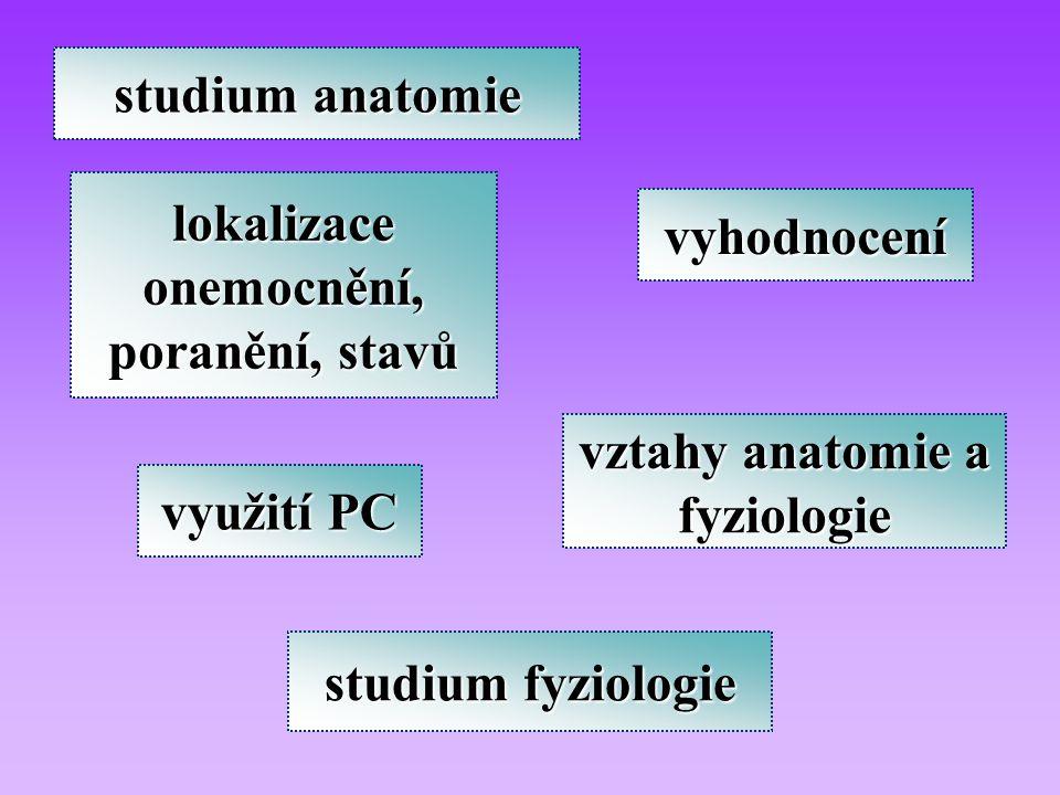 využití PC lokalizace onemocnění, poranění, stavů vyhodnocení studium anatomie vztahy anatomie a fyziologie studium fyziologie
