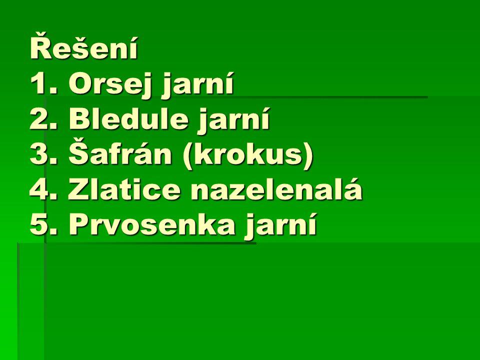 Řešení 1. Orsej jarní 2. Bledule jarní 3. Šafrán (krokus) 4. Zlatice nazelenalá 5. Prvosenka jarní