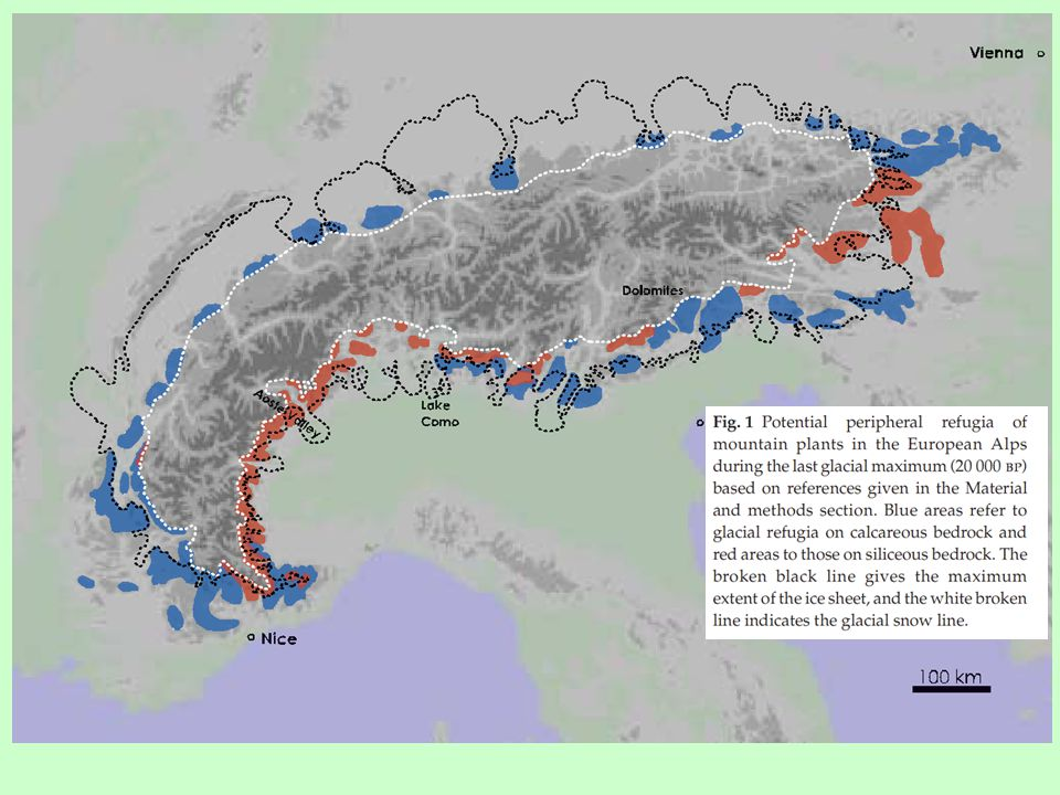 Zonace vegetace v Alpách silikátvápenec